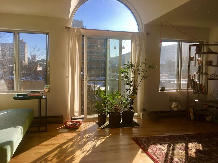 The sunniest living-room
