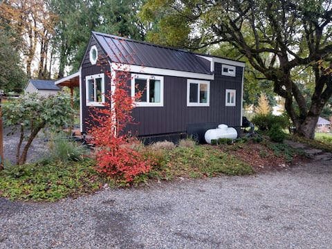 Cozy Tiny House & She-Shed on Serene Lakefront