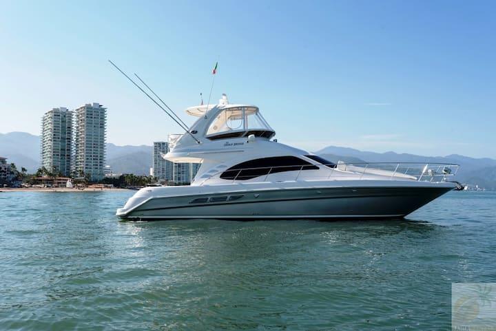 ≈≈44ft Luxury Sea-Ray Yacht in Puerto Vallarta≈≈