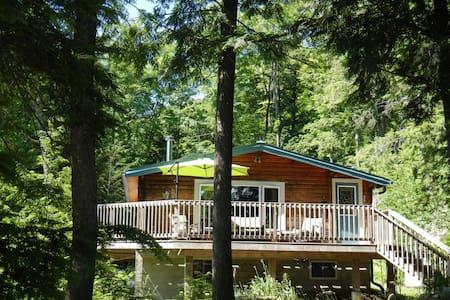 Lakefront Cottage on Chandos Lake - Apsley - 小平房
