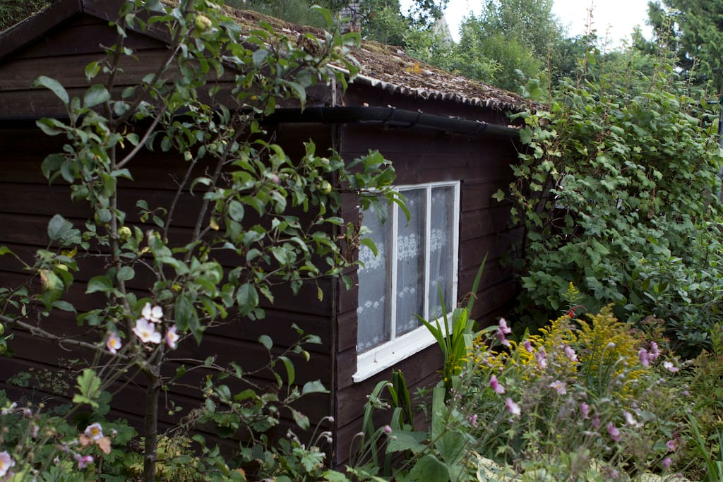 Lockable shed