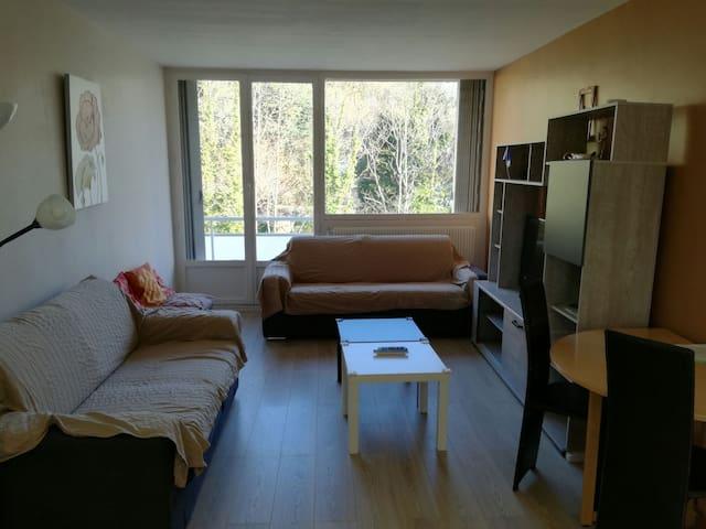 2-Bedroom Flat - Saint-Étienne - Pis