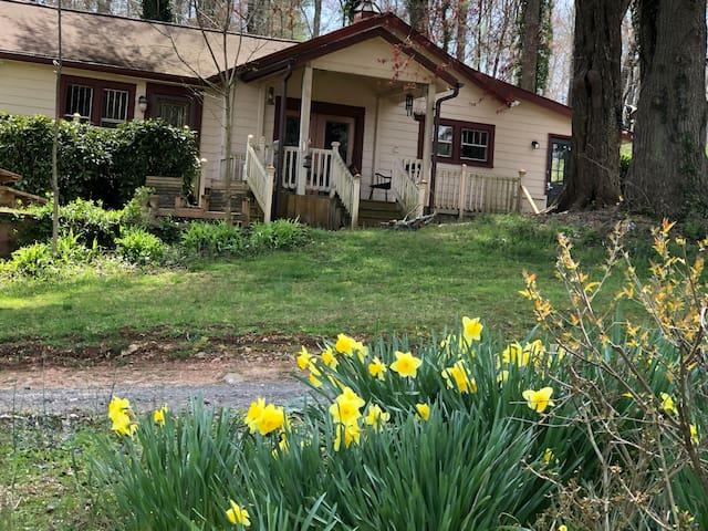 Rustic Updated Special Cabin / Asheville, Biltmore