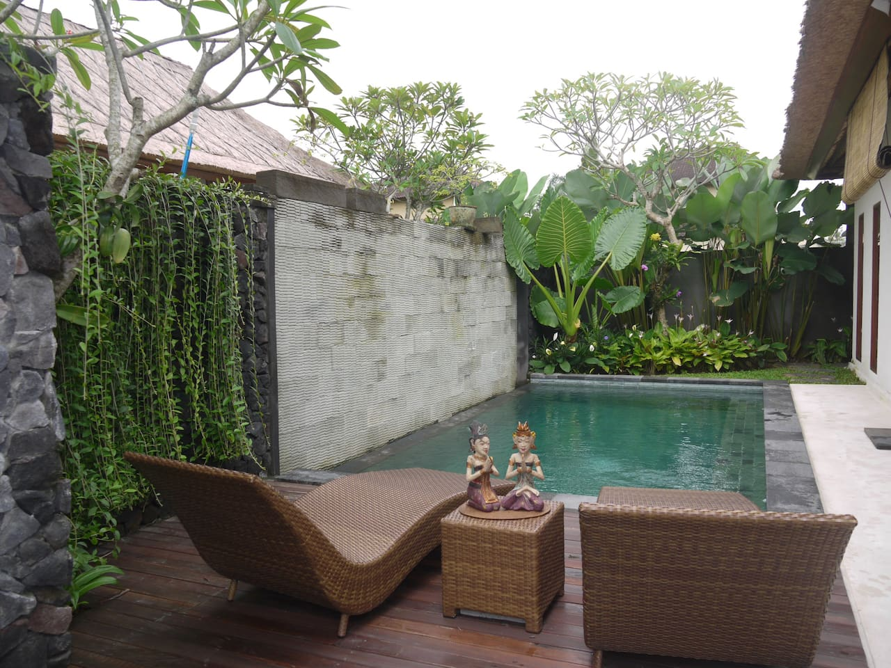 Natural view of the pool area