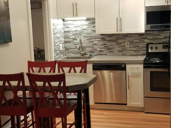Remodeled 1br Condo walk to lifts or buses