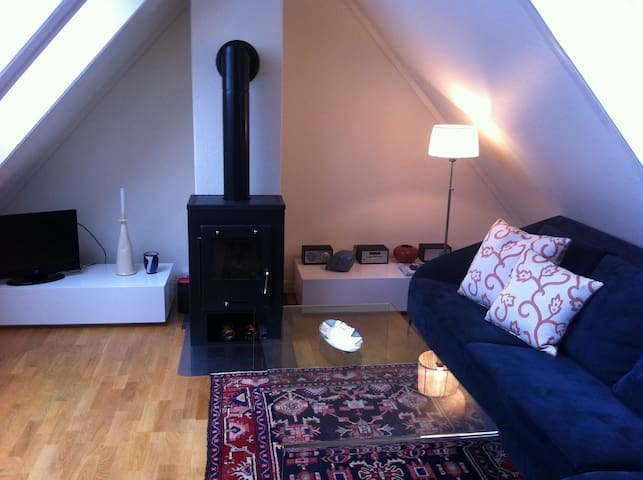 Newly Renovated 2bdr Apt. in Rjukan - Rjukan