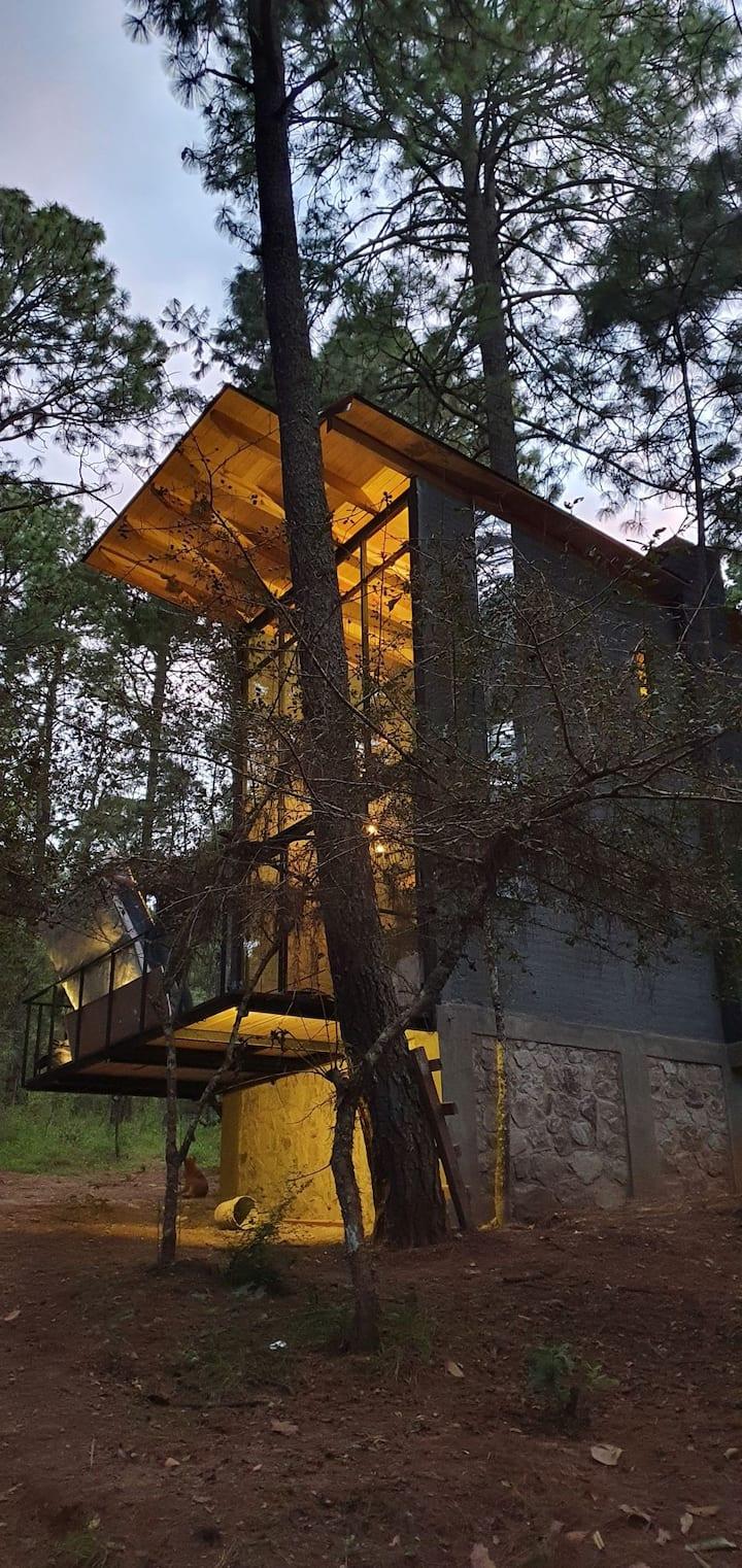 Cabaña bosque viejo 6 (2 personas)