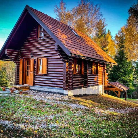 Pine Lodge - isolated mountain wooden log house ❄️🎄