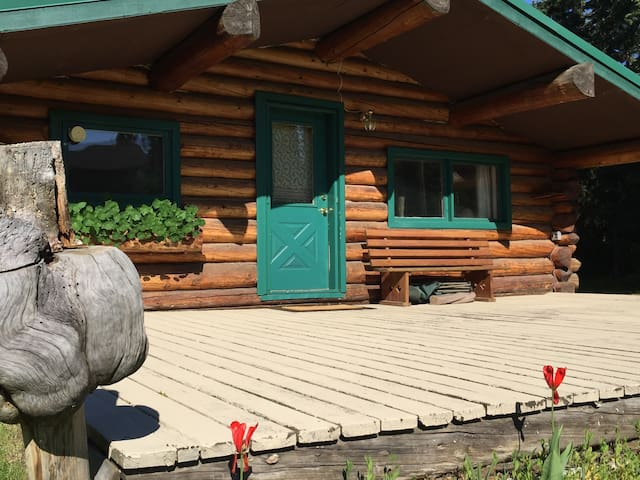 Cabin located on the beautiful Tanana  River!