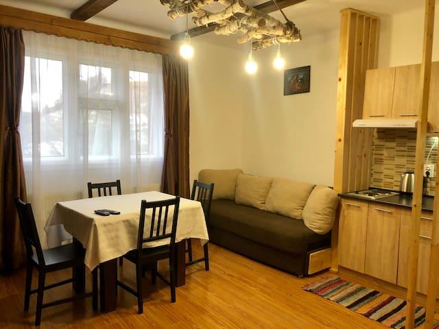 Cozy apartament1with fireplace.Casa Margau Apuseni