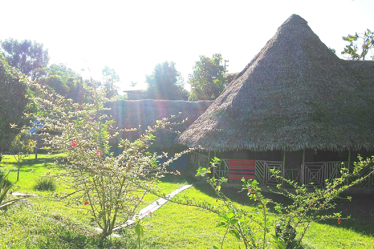This is the Maloca, an 8-sided building and traditional meeting house, the home of Claire since 2007