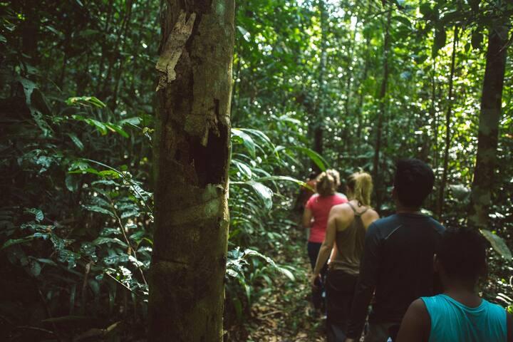 Tumbira - Um mergulho na Amazônia
