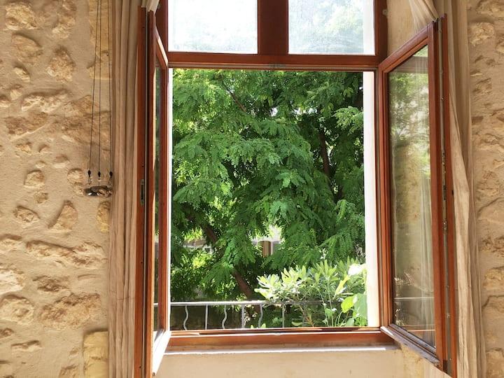 Havre de paix avec jardin au coeur de Marseille