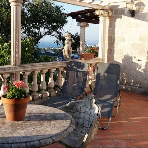 "Villa apartment ""ISCHIA""  with  daily transfers"