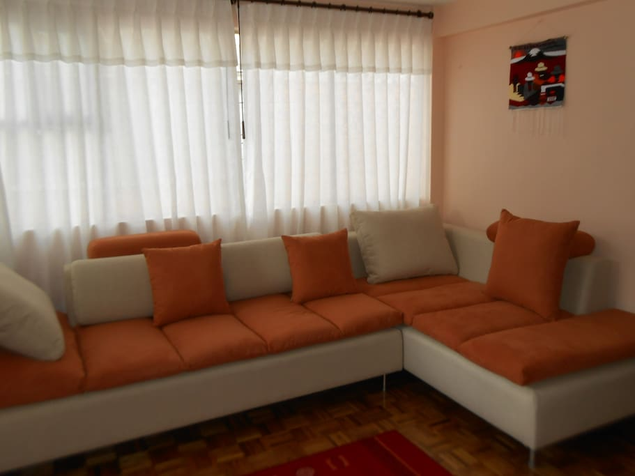 very confortable american style sofa
