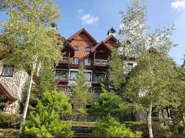Birch Hill Condo 버치힐,용평리조트(Yongpyung Ski resort)