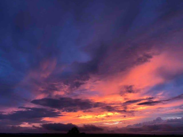 Beautiful sunsets daily!