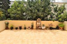 Bonito piso tiene plantas de verdad. Los huéspedes tendrán que regar de vez en cuando. Siempre pongo plantas. Es muy acogedor