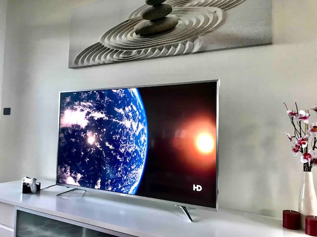 All-New 4K High Definition T.V's with Complementary Netflix Access