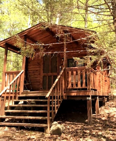 Rustic Catskills Log Cabin #1