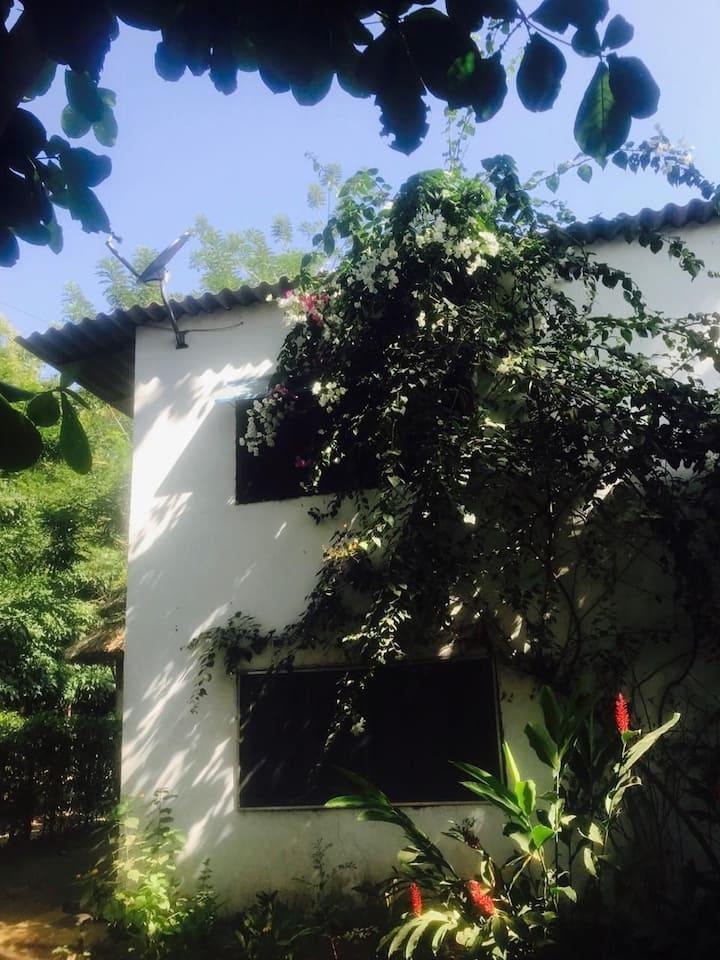 Alojamiento rural, Los Almendros, palomino
