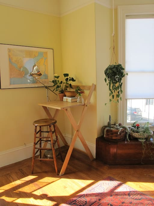 Main room with a standing desk and plant collection