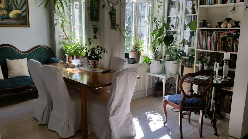 Grunerløkka koselig privat rom  med egen inngang.