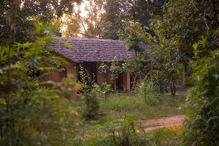 Kamp Kamouflage Kanha Jungle Home - Kanha