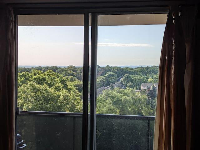 Lake view terrace room in Burlington