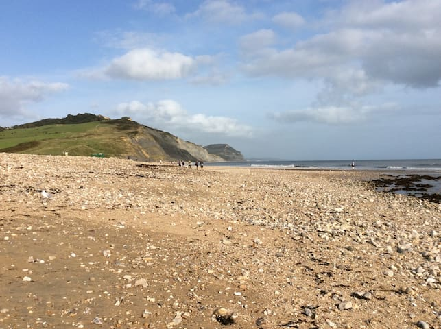 Broadlands in Charmouth 100m beach /breakfast inc