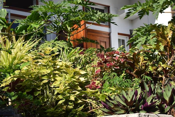 Les Antigones - Private Apartment 1