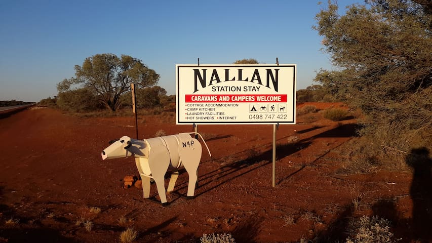 Welcome to Nallan, look for the white cow  :)