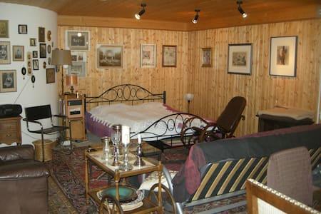 Großes Zimmer im Keller nahe Rheinbach - Swisttal - House