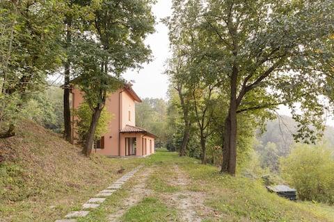 Casa Malvarosa living in the wood