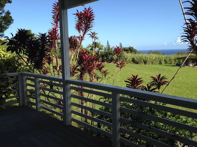 Hamakua Coast Ocean Room