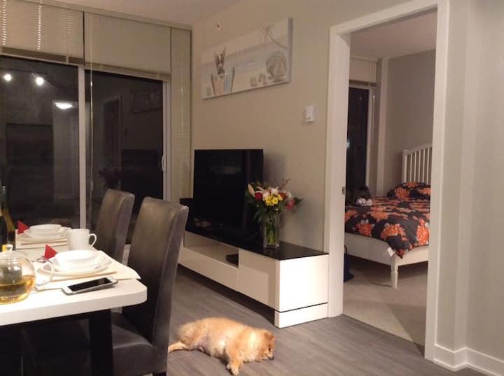 PROMO Brand new deluxe two bedroom apt  豪华全新两房
