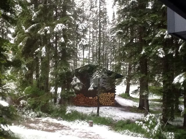 Very Rustic Cabin on Big Mountain for the Hearty! - Whitefish - Bungalow