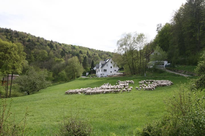 Twee ruime gastenkamer in de Fränkische Schweiz