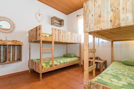 Ticket2Surf | Guesthouse | Mundaka Dorm Room