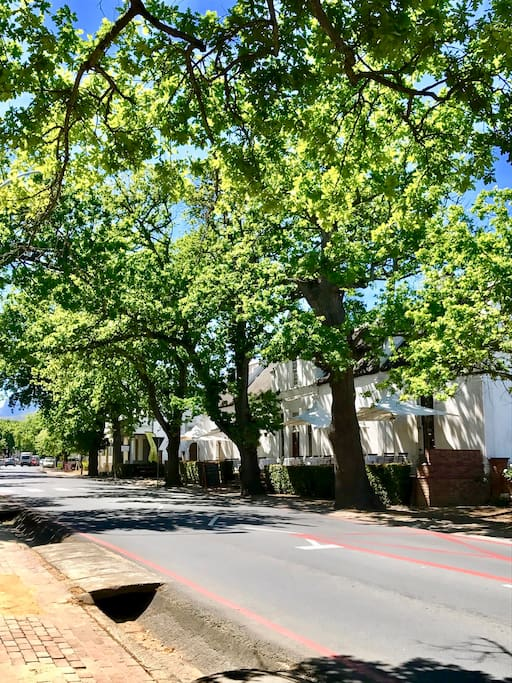 Take a stroll down leafy Dorp street, second oldest road in the country boasting a variety of architectural styles, from Cape  Dutch to Victorian.