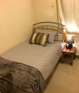 Small, comfortable room in beautiful home - London
