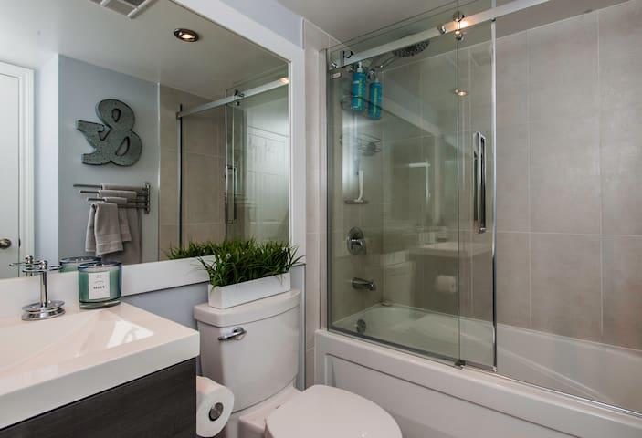 Designer bathroom…glass and steel tub/shower roller door.