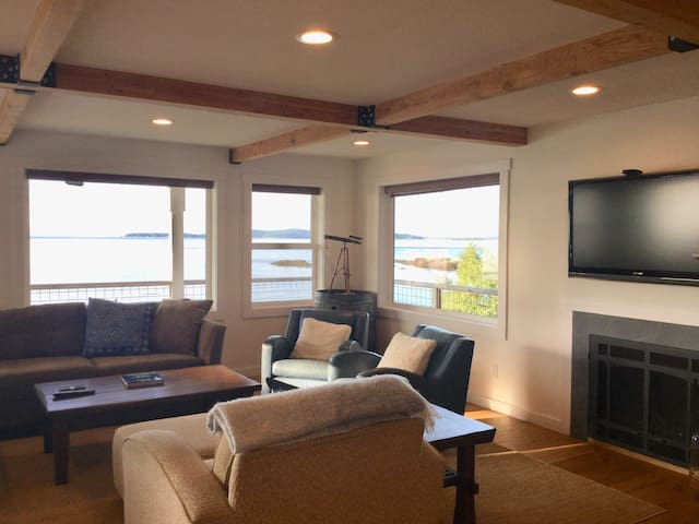 Rec room on lower level with propane fireplace and Apple TV