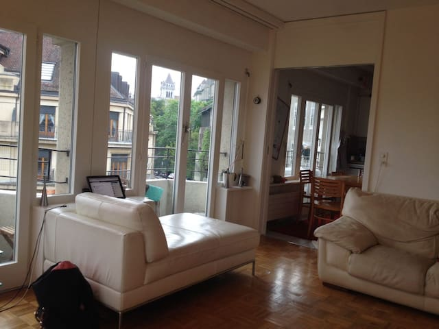 Old City room in a nice and living appartment - Genève - Guesthouse