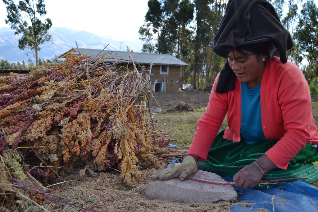 Learn our traditional Quechua practices