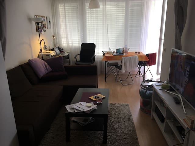 Cosy furnished studio in Zurich Altstetten