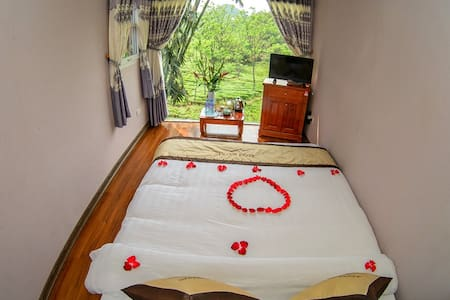 Moc Chau blossom with bungalow for 2 days/1 night - tt. Mộc Châu