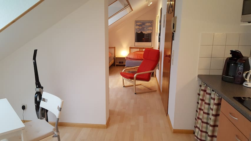 City apartment on the edge of Cent - Freiburg im Breisgau - Apartment