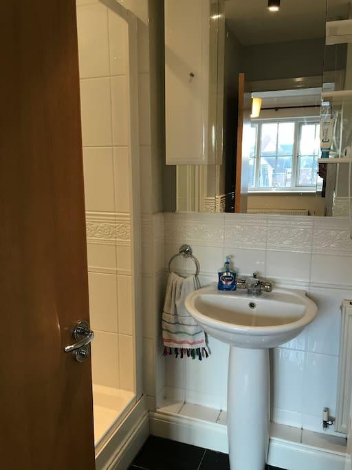 Master Bedroom Ensuite (shower on left, toilet on right)