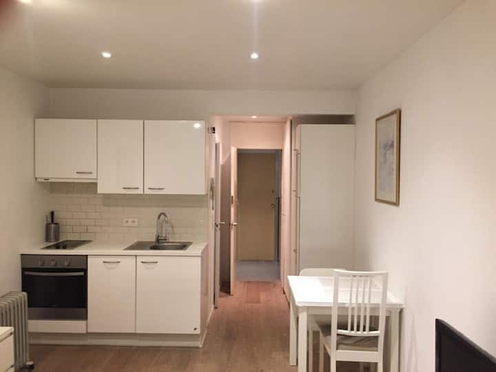 Flat in a Central Area